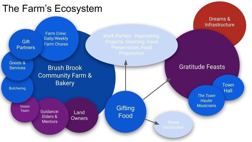 The Farm's Ecosystem