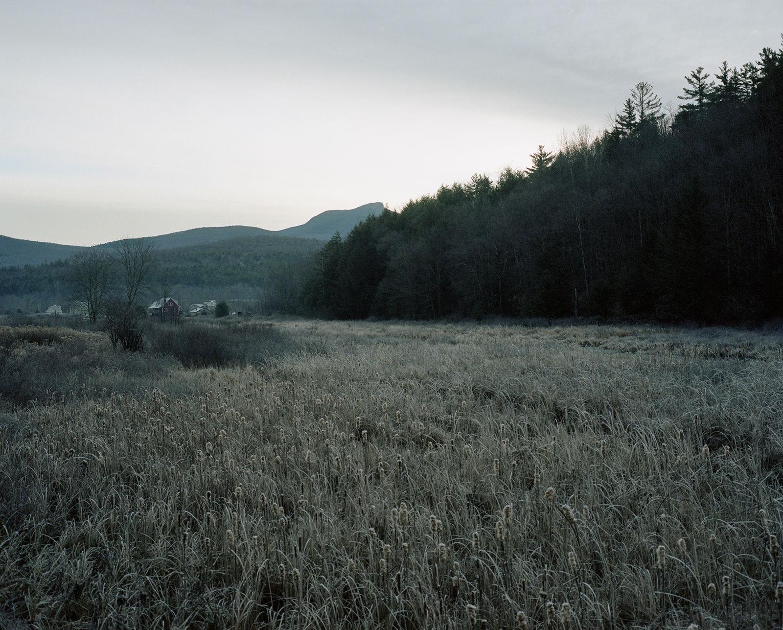 smokey-field