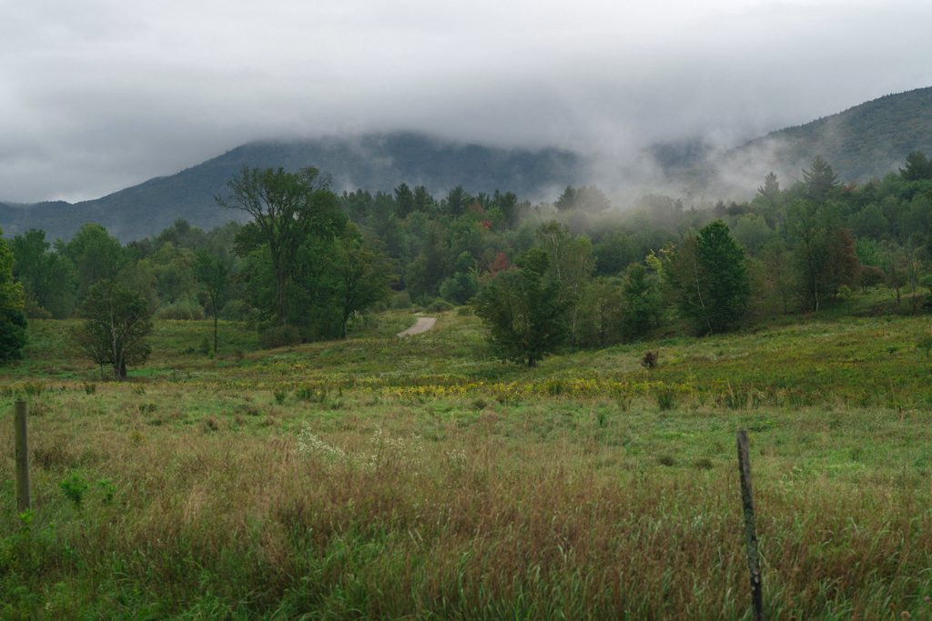 misty-hills